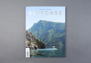 Suitcase # 34
