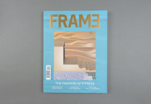 Frame. The Great Indoors # 117