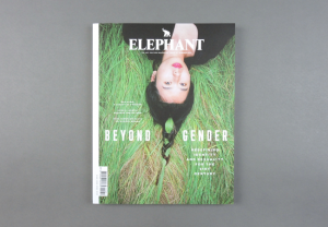 Elephant # 31