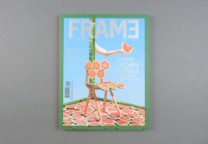 Frame. The Great Indoors # 118
