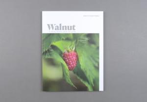 Walnut # 02
