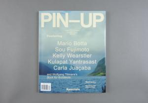 Pin-Up # 17