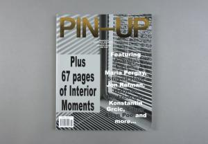 Pin-Up # 15