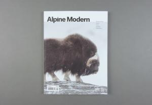 Alpine Modern # 05
