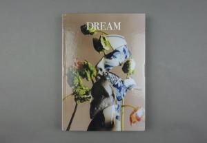 Dream # 04
