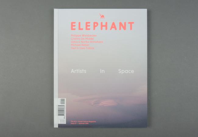 Elephant # 19