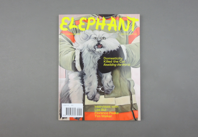Elephant # 41