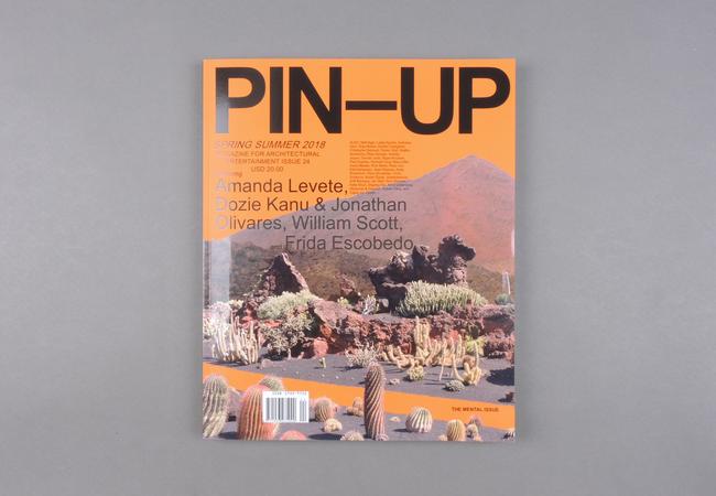 Pin-Up # 24