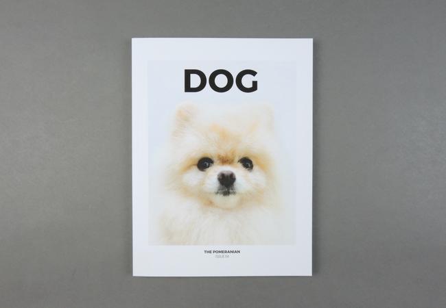 Dog # 05