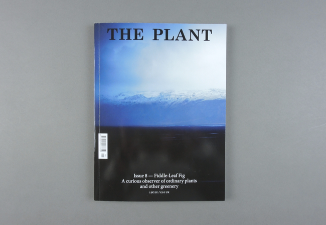The Plant # 08