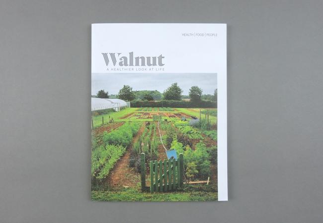 Walnut # 01