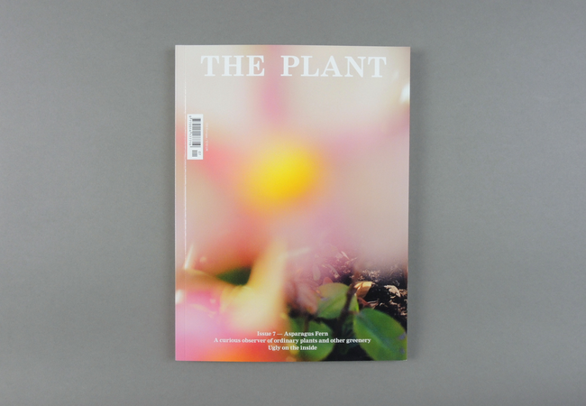 The Plant # 07